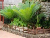 1500_jardin.JPG