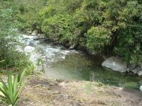 2936_3-river_view-.JPG