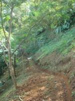 3202_hiking_path.JPG