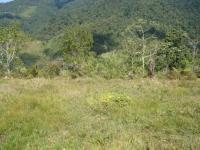 3267_pasture_(2).JPG