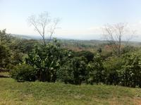 4575_farm-sale-miravalles_(2).JPG