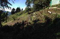 4878_cabin-sale-costarica-mountains_(20).JPG