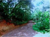 5402_7958_road.jpg