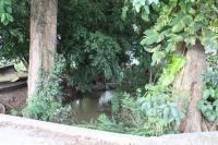 6778_1697_sevendepropiedadindustrial-coyol-alajuela-231-101-puente-rio.jpg