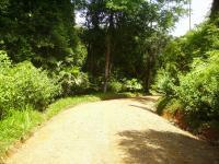7044_6168_roads.JPG