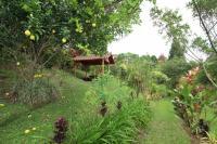 7449_1720_202-jardines-373-nuevoshorizontespropiedades-se-vende-casa-en-venta-El-Roble-SAnta-Barbara-Heredia.jpg