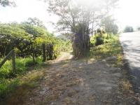 7695_4343_023-entrada-445-nuevos_horizontespropiedades-San_Ramon-Alajuela-sevende-casa1.JPG
