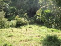 7695_8580_026-finca-445-nuevos-horizontespropiedades-San-Ramon-Alajuela-sevende-casa1.JPG